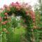 Kertészeklub vezetőjének  képei 5