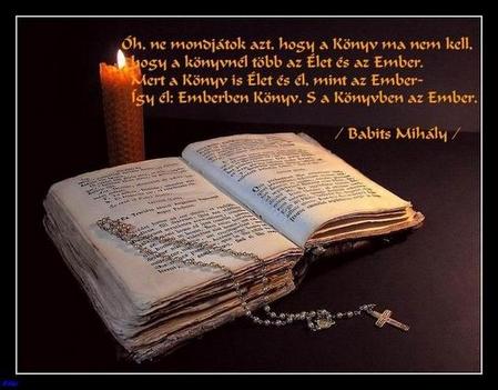 könyv-idézet