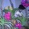 orchidea kiállítás 2011. nov.05. 231