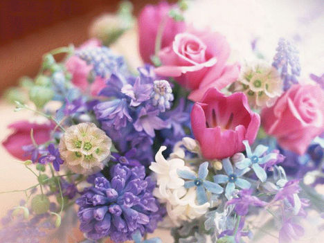 ,,,,,szép virág
