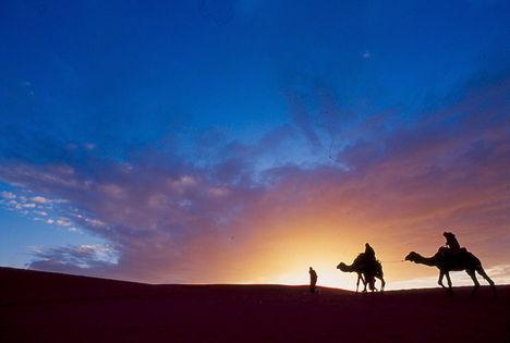 tevék, sivatag, naplemente