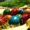Áldott húsvéti ünnepeket kívánunk Mindenkinek!