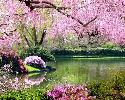 Tavasz színei_74064