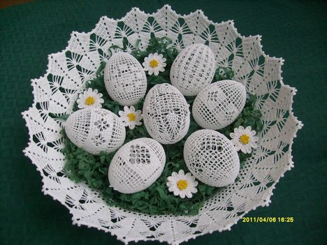 tojások 11