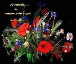 Virágok, melyek Isten dicsőségét hírdetik 2