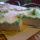 Ortoped_nyuszis_torta_1415519_2559_t