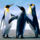 Penguins_1419031_4474_t