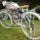 Motorizált kerékpárok képei