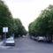 Sümeg-Árpát utca: a virágzó vadgesztenyefái