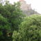 Sümeg-fák közt a vár oldala
