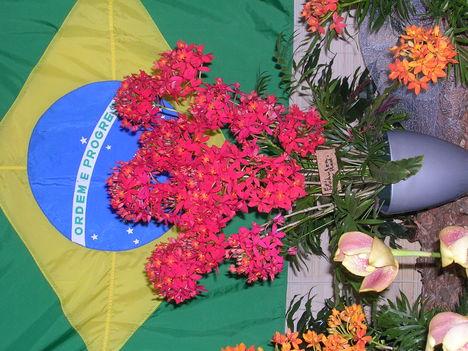 Kép Nemzetközi orchidea kiállítás 2012.04.15. 014