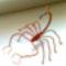 scorpió rézdrótból