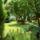 Nagy Zsolt fotói,saját kertjükből