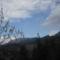 Rügyező fa es a hegyek