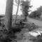 1900. libalegeltetés