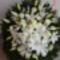 Kegyelet virágai 5