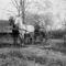1925. Paradés kocsis