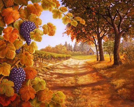 Ősz vidéken_446668