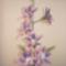 harisnya virágaim 002