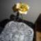 harisnya virágaim 011