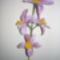 harisnya virágaim 022