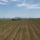 Panorama_1436806_9810_t