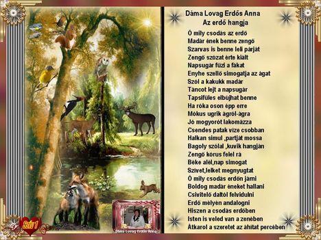 Dáma Lovag Erdős Anna Az erdő hangja