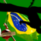 Capoeira_wallpaper_by_evolin
