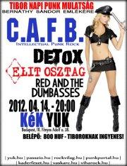 Elit Osztag, CAFB, Detox koncert