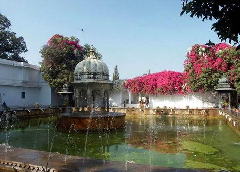 Kert valahol Jaipurban