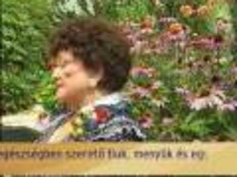 Kovács Apollonia