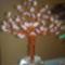 cseresznyefa szerű