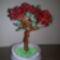 rózsafa