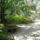 Jeli_arboretum-003_1448921_3130_t