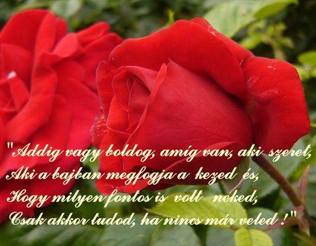 rózsairással