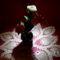 gyöngyvirág 8