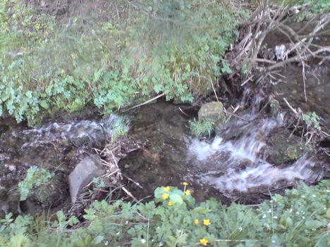 Gyorsvizű kis patak