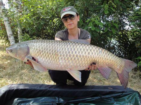 Nők-halak amúr12,4kg-17826126