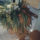 Orchidea_1455714_7292_t