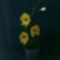 Orchidea - sárga