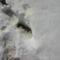 A nyomokból látszik a hó mélysége