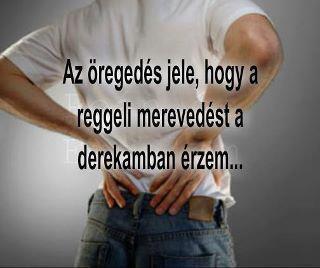 Humoros-vicces... 2