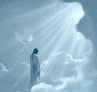 Isten a csillagrendszerekkel és az ibolyák gyökerével törődik csupán.