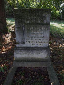 Mészáros Károly és a hősi halált halt Szédely Sándor