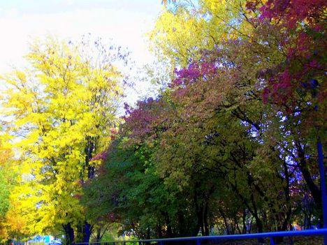 Ősz szinei
