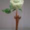 almazöld rózsa