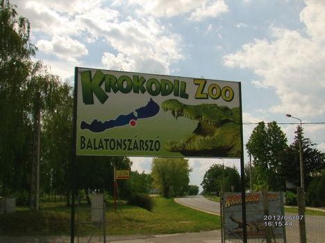 Krokodil Zoo Sok mindent nem sikerűlt fotózni mert üvegen keresztűl vissza tükröződött