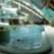 Tamási fürdő 13