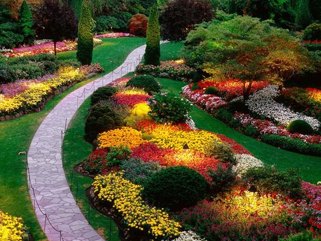 Virágos kert-536712