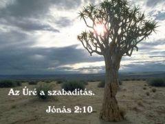 Az Úré  a szabadítás